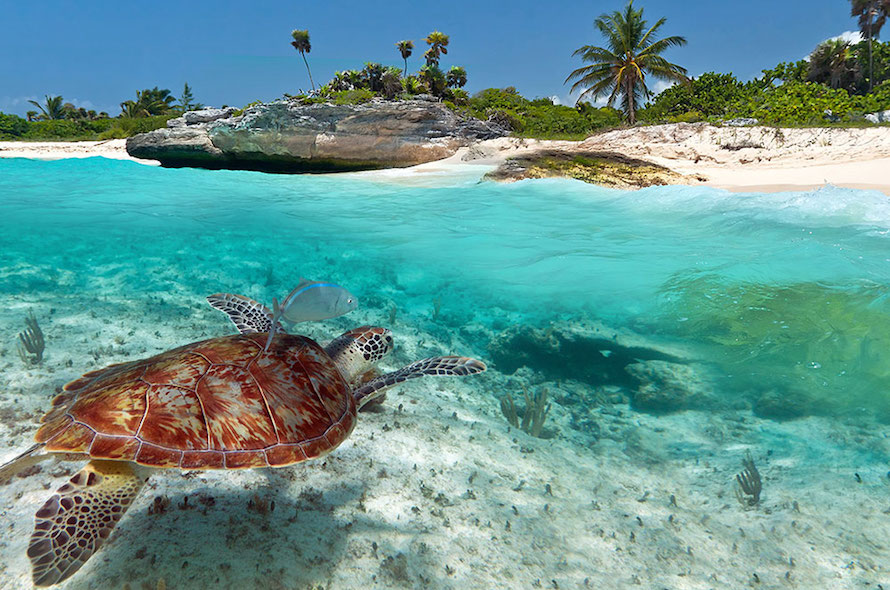 Caribbean islands vacation ideas and inspiration